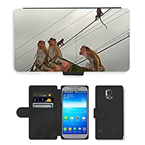Super Stella Cell Phone Card Slot PU Leather Wallet Case // M00107682 Monkeys Rope Walk Animal // Samsung Galaxy S5 S V SV i9600 (Not Fits S5 ACTIVE)