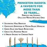 Princeton Dakota, Series 6300, Synthetic Hog