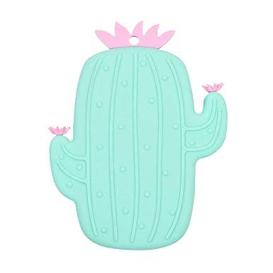 Amazon.com: UMFun Lovely Cactus - Cepillo de baño de ...
