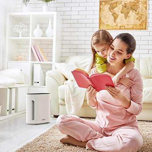 Pure Enrichment PureZone Air Purifier 3-in-1 True HEPA Filter with UV-C Sanitizer - Helps Relieve Allergies, Eliminate Germs, Pet Dander, Smoke, Dust & More - Whisper Quiet Operation & Auto Off Timer