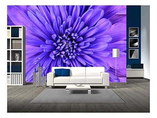 wall26 - Detail of Blue Chrysanthemum Flower Head Closeup Background - Removable Wall Mural | Self-Adhesive Large Wallpaper - 100x144 inches