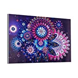 Baulody Beautiful Geometric Flower Modern Special Shaped Diamond Painting DIY 5D Partial Drill Cross Stitch Kits Crystal Rhinestone of Picture Serial Arts Print Craft 30X40cm (Mutilcolor)