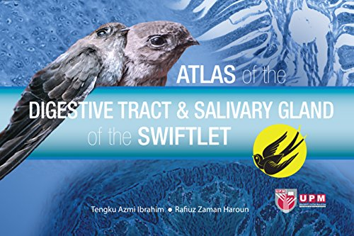 Atlas of the Digestive Tract & Salivary Gland of the Swiftlet