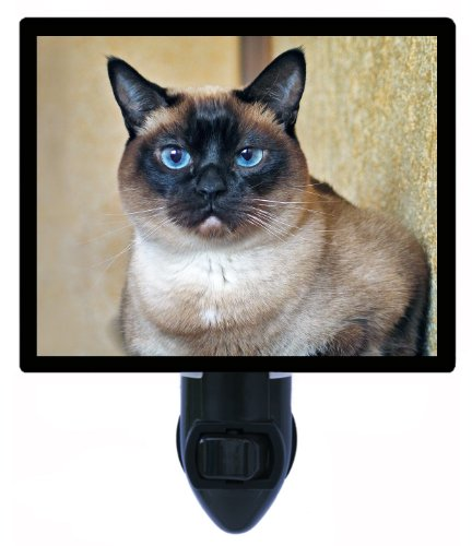 Cat Night Light - Siamese Cat (Siamese Cat Lamp)