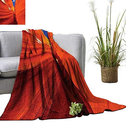 (YOYI Polyester Blanket Cany in United Stat America Cozy and Durable)