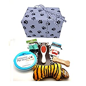 New Puppy Gift Package with Paw Print Wrapping Paper