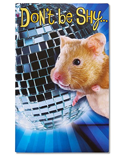 American Greetings Funny Hamster Birthday Card with Music and Movement