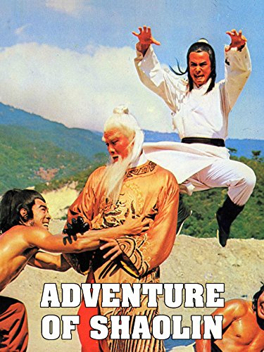 Adventure of Shaolin