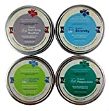 Heavenly Tea Leaves Herbal Tea Sampler, Naturally Caffeine-Free, 4 Count (Organic Spa)