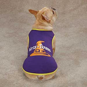 Casual Canine Witch in Training Tee for Pets, X-Small, Purple