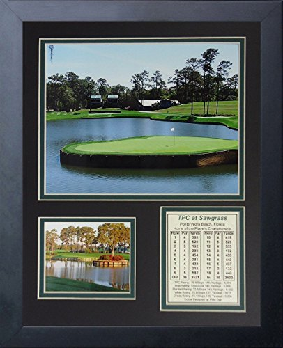 11x14 FRAMED TPC AT SAWGRASS HOLE #17 PLAYERS CHAMPIONSHIP 8X10 - At Shops Sawgrass