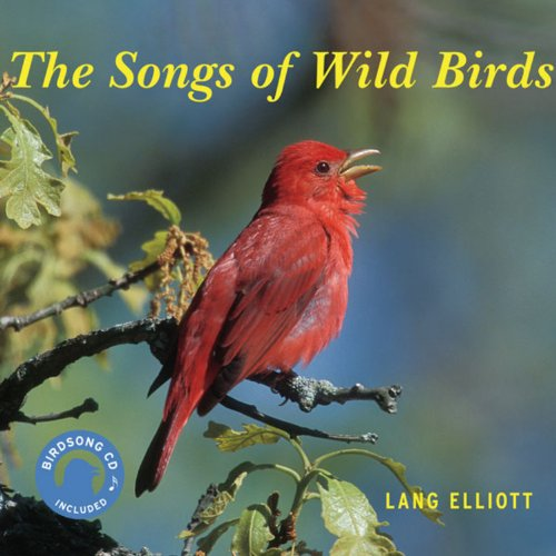 (The Songs of Wild Birds)