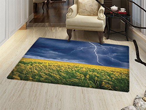 (smallbeefly Nature Bath Mats Carpet Thunder Bolt above the Seasonal Field Electric Vibes Mother Nature Theme Image Floor Mat Pattern Yellow Blue)