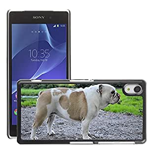 Hot Style Cell Phone PC Hard Case Cover // M00112782 Dog Playing Park Canine Doggy Furry // Sony Xepria Z2 L50W