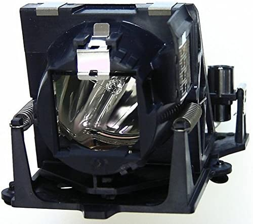 ProjectionDesign SX40 Projector Housing with Genuine Original OEM Bulb