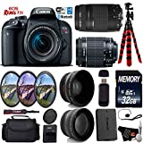 Canon EOS Rebel T7i DSLR Camera 18-55mm is STM Lens & 75-300mm III Lens + UV FLD CPL Filter Kit + Wide Angle & Telephoto Lens + Camera Case + Tripod + Card Reader – International Version For Sale