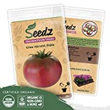 Organic Tomato Seeds (APPR. 100) Cherokee Purple Beefsteak Tomato - Heirloom Vegetable Seeds - Certified Organic, Non-GMO, Non Hybrid - USA