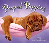 Pooped Puppies 2017 Boxed/Daily Calendar
