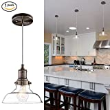 light fixtures ceiling kitchen - Donglaimei Mini Vintage Clear Glass Pendant Light, Edison Industrial Design Hanging Fixture Lights, Single Bulb Lighting for Kitchen Island, Living Room, Dining Room(1 Pack)