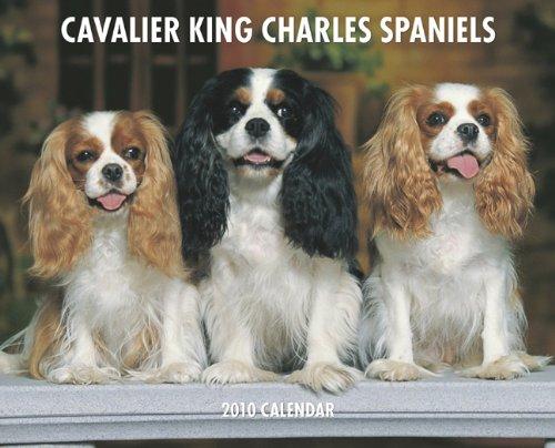Cavalier King Charles Spaniels 2010 Calendar