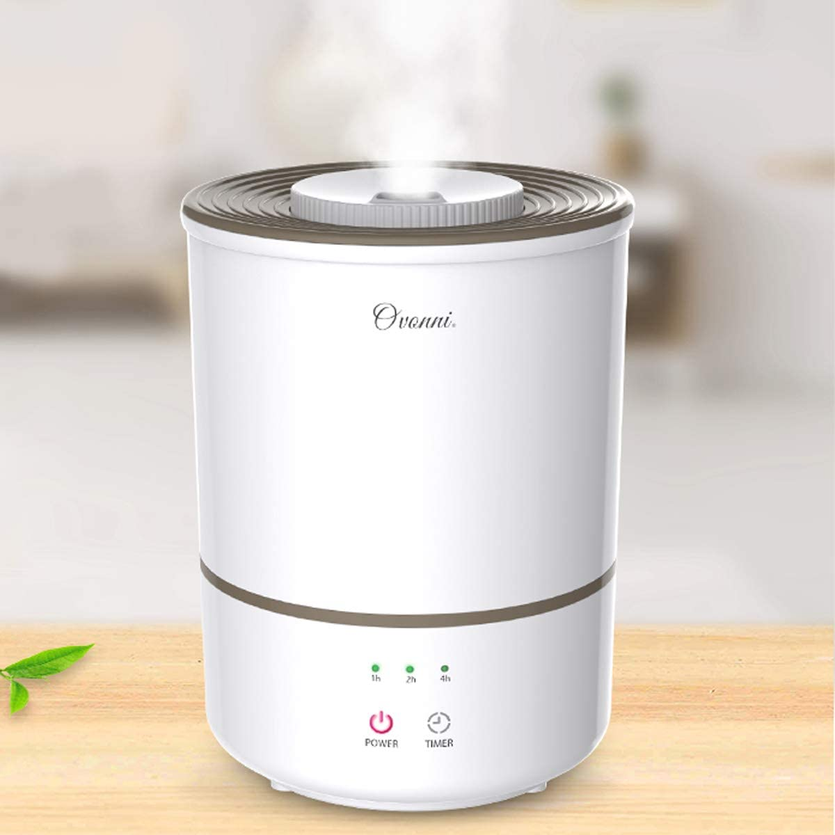 Ovonni Humidifiers 3L Cool Mist Ultrasonic Humidifier for