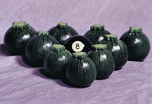 David's Garden Seeds Zucchini Round Eight Ball D2624UI (Green) 25 Hybrid Seeds