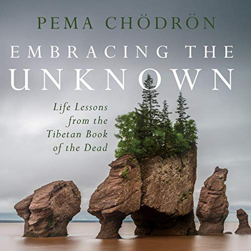 Pdf Self-Help Embracing the Unknown: Life Lessons from the Tibetan Book of the Dead