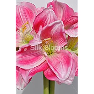 Elegant Artificial Pink Amaryllis, Fern and Heather Floral Display w/ Grecian Vase 2