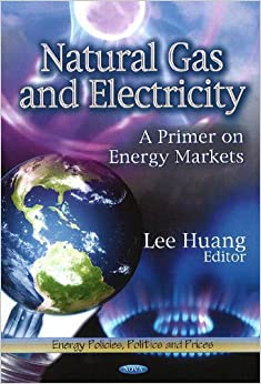 NATURAL GAS ELECTRICITY (Energy Policies, Politics and Prices: Energy Science, Engineering and Technology)