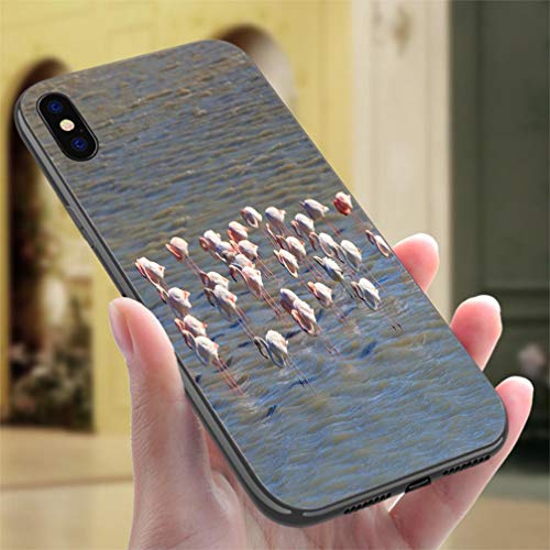 Pond Marine (Creative iPhone Case for iPhone X/XS Group of Greater Flamingo in a Marine Pond Resistance to Falling, Non-Slip,Soft,Convenient Protective Case)