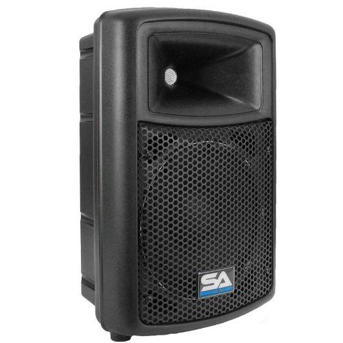 Seismic Audio - NPS-10 - Pro Audio PA DJ 10