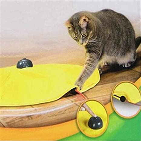 Gatos Meow amarillo cubierta de tela moviendo ratón gato juego gato juguete para interior gato gato gato gato divertido accesorios: Amazon.es: Hogar