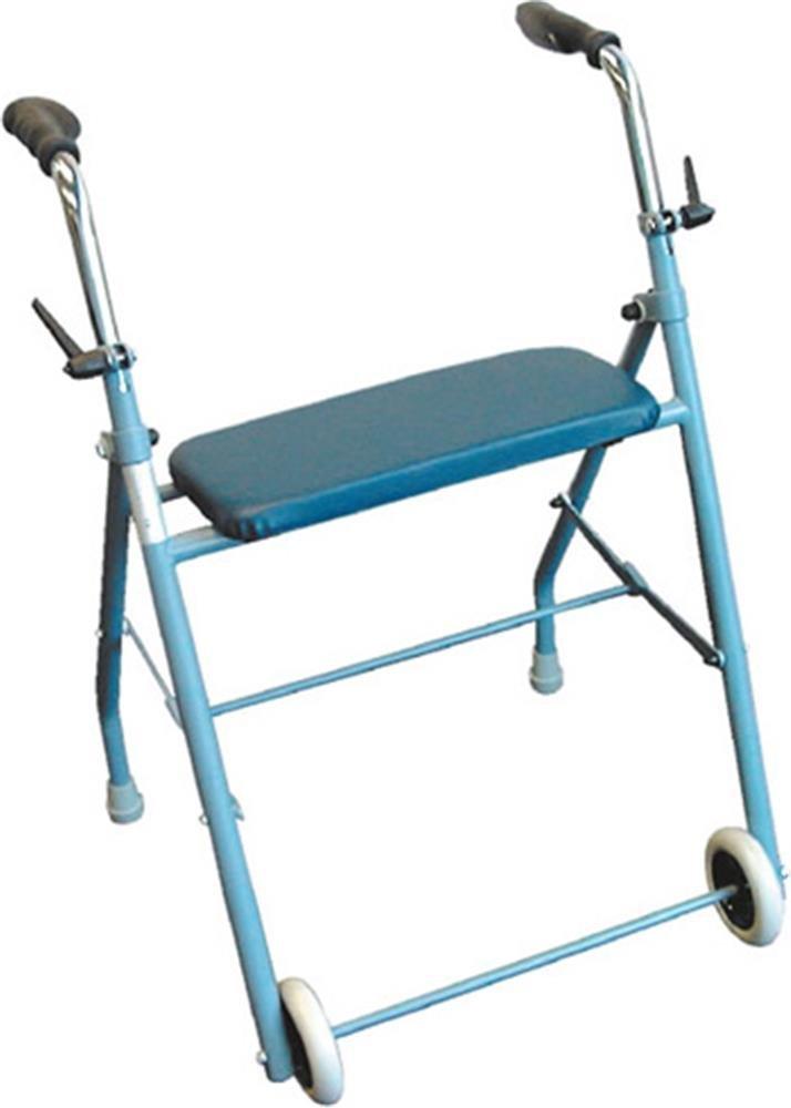 deambulateur andador 2 ruedas: Amazon.es: Salud y cuidado personal