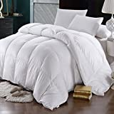Abripedic Goose Down 600-Thread-Count King / Cal-King Size Solid White Goose Down Comforter, 100 percent Cotton Shell, 600 TC - 750FP - 56Oz
