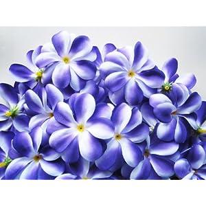 "(100) Purple White Hawaiian Plumeria Frangipani Silk Flower Heads - 3"" - Artificial Flowers Head Fabric Floral Supplies Wholesale Lot for Wedding Flowers Accessories Make Bridal Hair Clips Headbands Dress 11"