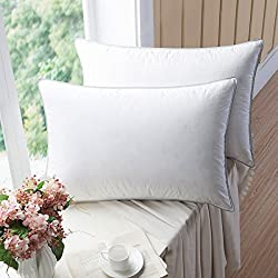 WENERSI Premium Goose Down Pillows with Feather Blended,(2-Pack, Queen Firm) 100% Cotton Shell with Ultra Fresh Treatment