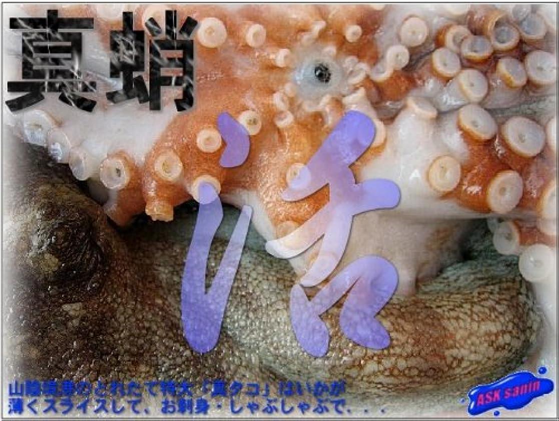 ボイド中傷クレデンシャル中国産 ボイルカットタコ(たこ)1kg(1個6-7g) たこ焼 大人気です。限定品 業務用