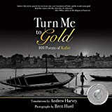 img - for Turn Me to Gold book / textbook / text book