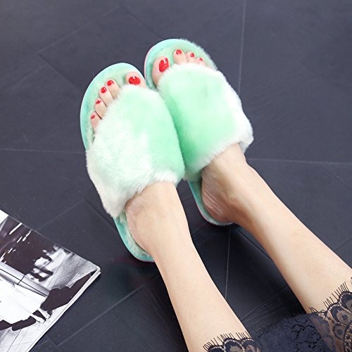 DogHaccd Zapatillas,En el otoño de interior de invierno quedarse en casa par mopa de algodón afelpado suelos chica que zapatillas de felpa hembra El verde3