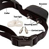 Runpettee Dog Training Collar with