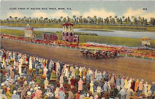 Close Finish at Hialeah Race Track Miami, Florida, FL, USA Old Vintage Horse Racing Postcard Post Card