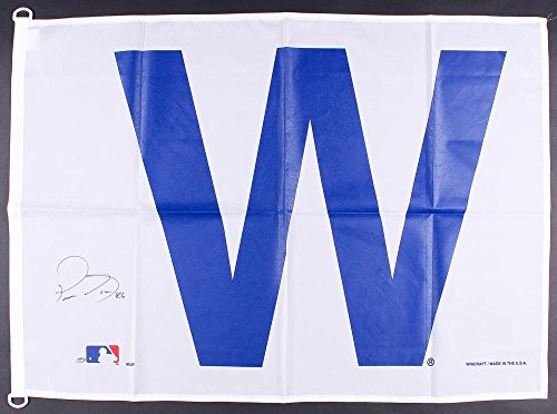 PEDRO STROP SIGNED 28x41 CHICAGO CUBS