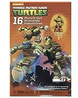 American Greetings Teenage Mutant Ninja Turtles Valentine's Day Exchange Cards, 16 Count (013286028606)