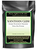 Xanthan Gum - Natural and Soluble Transparent Thickener - Extra Fine Powder, 2.5 lb