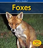 Foxes (2nd Edition) (What's Awake?)