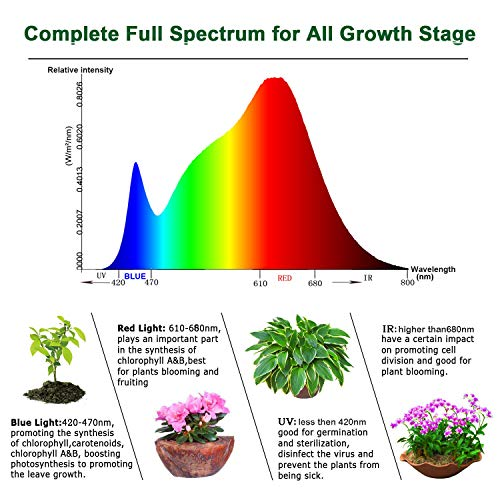 YGROW LED Grow Light Full Spectrum 600W,Reflector-Series Plant Grow Lights for Indoor Plants Veg and Flower with Heatproof Casing 3500K by YGROW (Image #1)