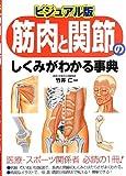 ビジュアル版 筋肉と関節のしくみがわかる事典
