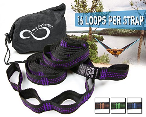 Hammock Suspension Tree Straps- Easy 16 Loops Straps – Lightweight Stretch Resistant Poly Webbed Strap With Triple & Carrying Bag - 500 Total Pounds- Universal Use For ENO, Grand Trunk (Purple) (Outdoor Furniture Boulder)