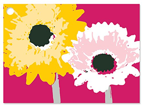 Daisy Inspirations Gift Cards (6 Pack) 3-3/4x2-3/4 by Nas