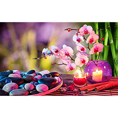 500 Piece Jigsaw Puzzle for Adults and Kids-Wooden Puzzle Orchid Candle Stone Zen Pattern Family Interactive Games, Great Holiday Leisure: Toys & Games